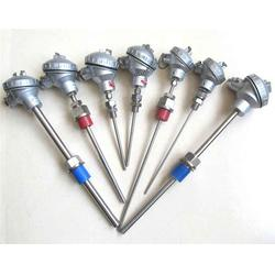 春輝集團公司、雙支熱電阻、熱電阻圖片