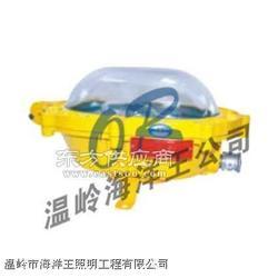 OR-NFC9131节能型热启动泛光灯图片