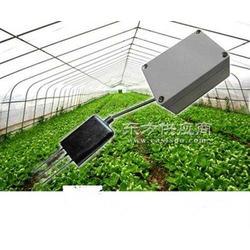 其他工控系统及装备温湿度传感器-温湿度传感器-昆仑图片