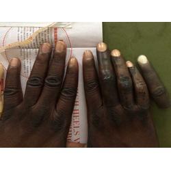 苏州假手指套,港园仿真工艺品(在线咨询),假手指套图片