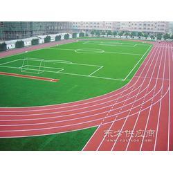 塑胶跑道及场地设计与施工图片