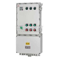 电伴热专用防爆配电箱图片