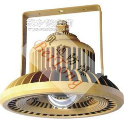 BTD110防爆免维护LED灯图片