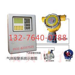 泄氨气体报警器|泄氨气体报警器图片
