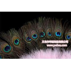 孔雀舞蹈扇报价,华旭饰品,嘉兴孔雀舞蹈扇图片