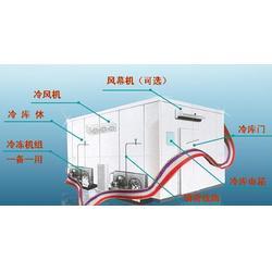 冷冻库、银雪制冷、冷冻库压缩机图片