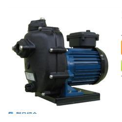 terada试压泵-千代田(在线咨询)terada图片