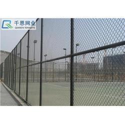 运动场地护栏_千恩球场护栏网(在线咨询)_运动场地护栏图片