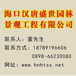 汉唐盛世 海口防腐木凉亭工程设计-防腐木凉亭工程图片