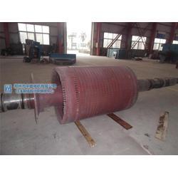 电机转子维修,忻州电机转子现场修理,中能电机图片