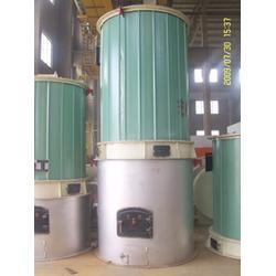 艺能锅炉-卧式燃气导热油炉安装图-导热油炉安装图图片