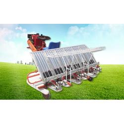摆秧机-摆秧机型号-隆辉农业(优质商家)图片