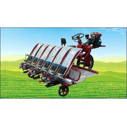 高速插秧机、潍坊高速插秧机、隆辉农业(优质商家)图片