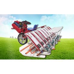 八行插秧机、隆辉农业、优质八行插秧机图片