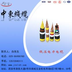 白水电力电缆_中东电缆,金力电缆(在线咨询)_电缆图片