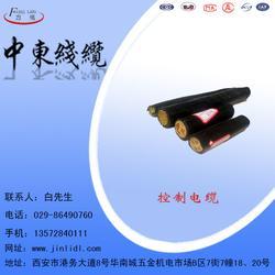 控制电缆_中东电缆,金力电缆_控制电缆图片