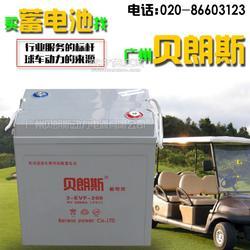 电动老爷车蓄电池品牌,电动老爷车电瓶型号大全图片