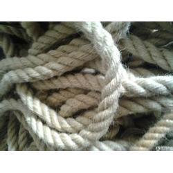 奎文迪尼玛绳、迪尼玛绳公司、凡普瑞织造(多图)图片