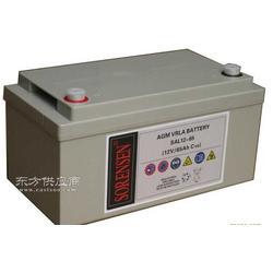 美国索润森蓄电池SAL12-150最新报价图片