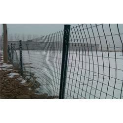 园林护栏网,园林护栏网供应商,广州园林护栏网(优质商家)图片