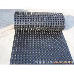 防水板,宏祥新材料,立体防水板图片