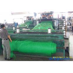 土工网垫|宏祥新材料|植草土工网垫图片