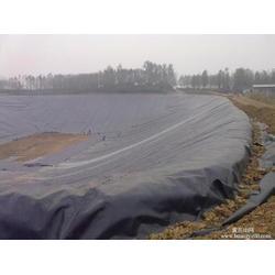 土工膜、宏祥新材料、宏祥股份专业生产土工膜图片