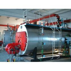 天津燃气锅炉选通达液化气|买燃气锅炉|淄博燃气锅炉图片