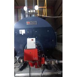 东丽区燃气锅炉销售-梅特南斯新能源图片