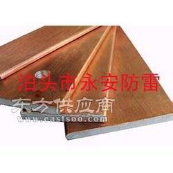 YA-FL型号铜包钢接地扁线图片