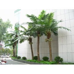 大型仿真椰子树 仿真棕榈树 枫树工程酒店 舞台造景安装仿真假树图片