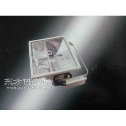 LED泛光灯1000W图片