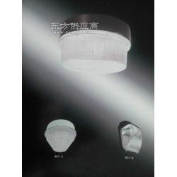 led无极灯40W图片