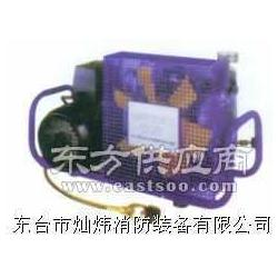 空气呼吸器充气泵,进口充气泵,汽油机充气泵图片