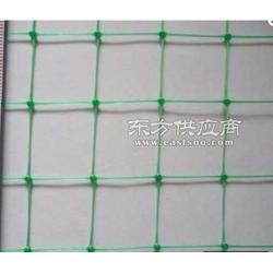 塑胶网塑胶方格网塑料网塑料方孔网十字绣网格图片