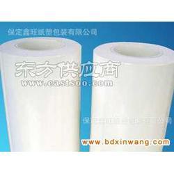 PE离型膜生产商PE离型膜供应商PE离型膜生产厂家图片